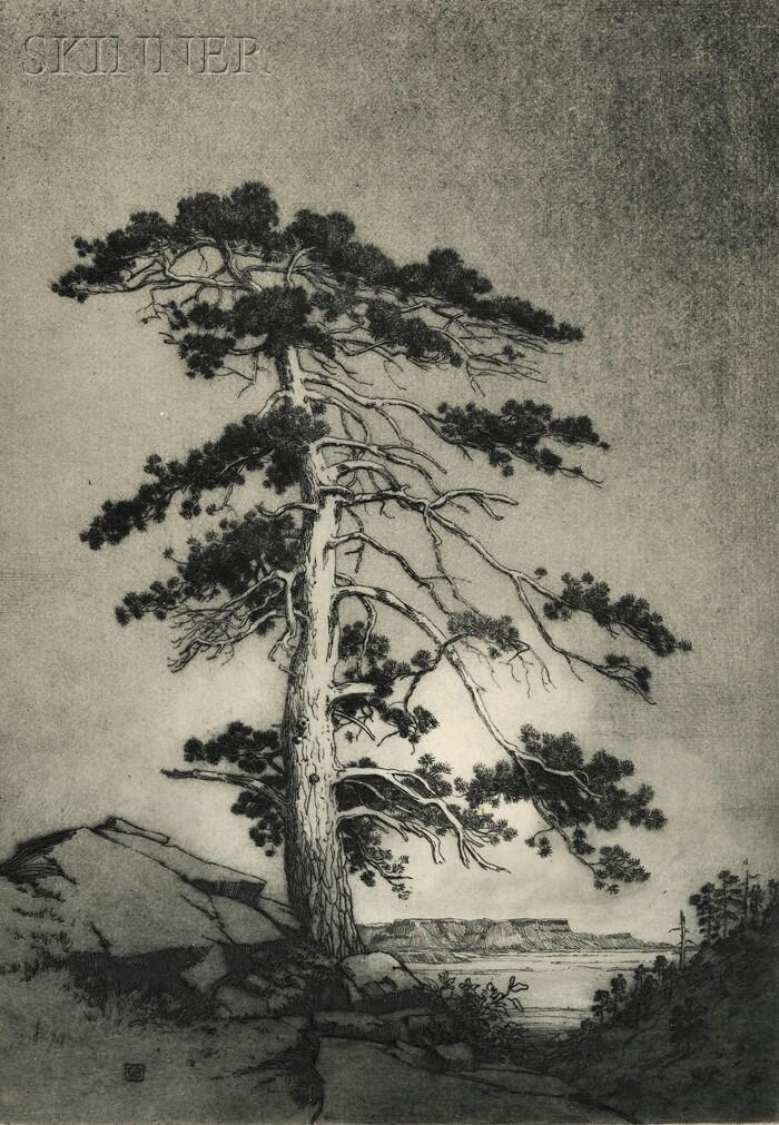 George Elbert Burr (American, 1859-1939)      The Sentinel Pine