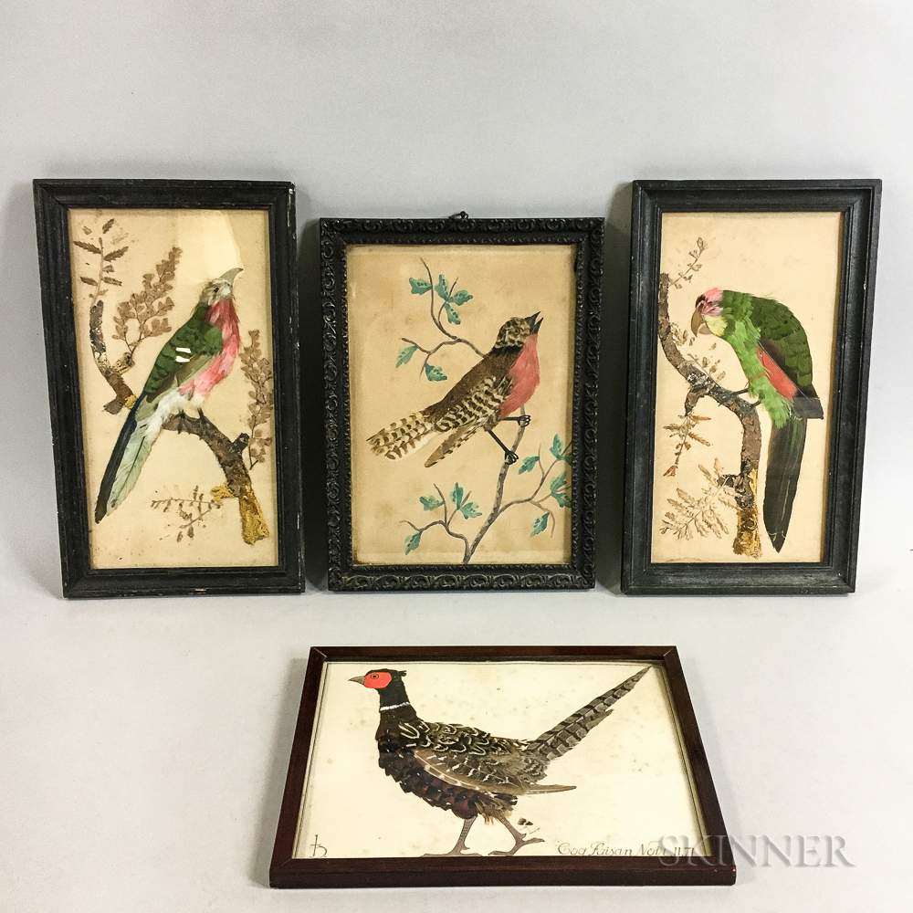 Five Framed Watercolor Bird Portraits with Feather Accents