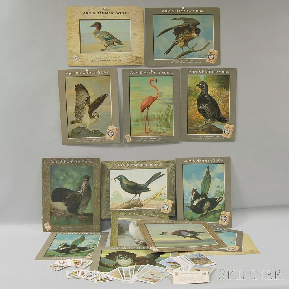 Group of Arm & Hammer and Audubon Bird-related Ephemera