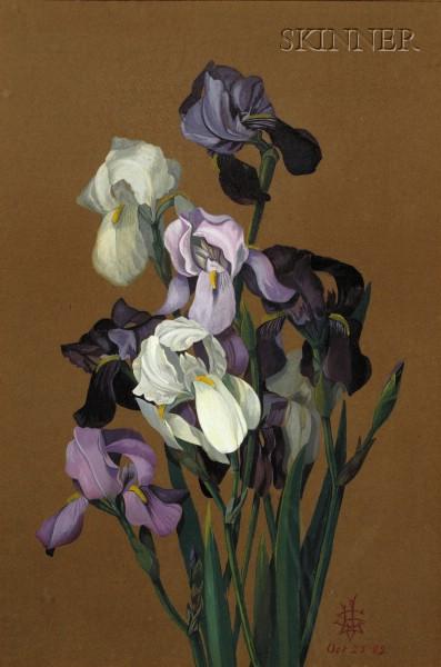 American School, 19th Century      Irises