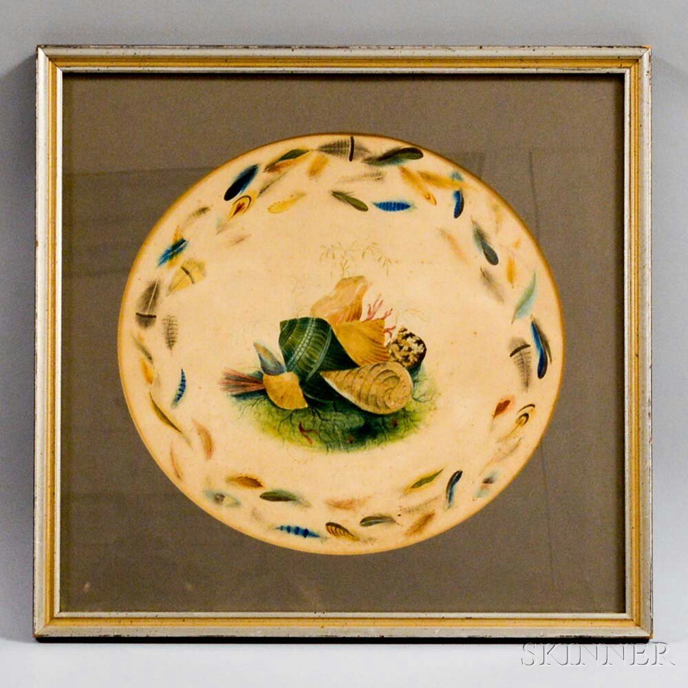 Framed Watercolor Theorem of Shells and Feathers