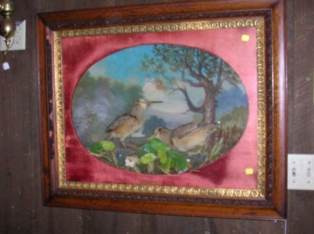 Late Victorian Framed Woodcock and Landscape Wall Diorama