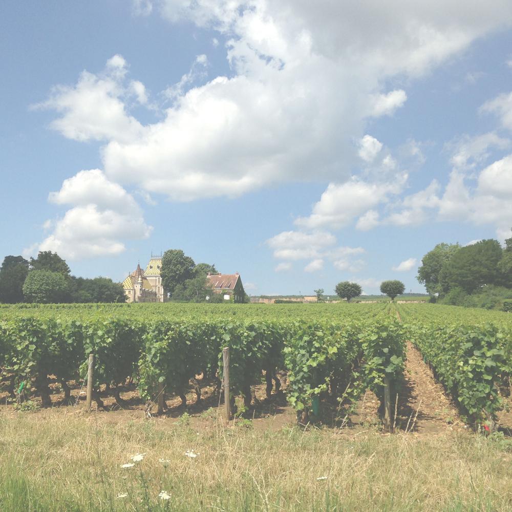 Veritas Winery Hanisch Vineyard Shiraz 1997, 2 bottles