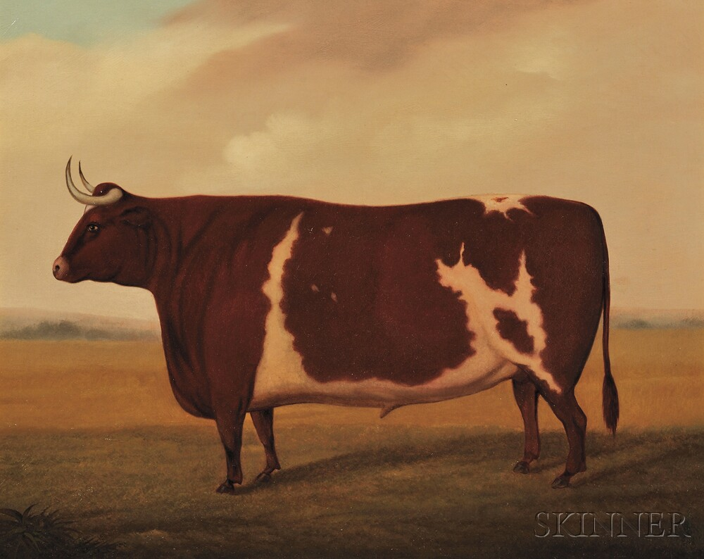 Anglo-American School, 19th Century      Portrait of a Prize Ox