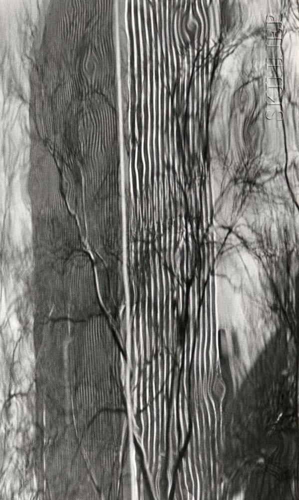 Peter Fink (American, 1907-1984)      Refractions, Philadelphia
