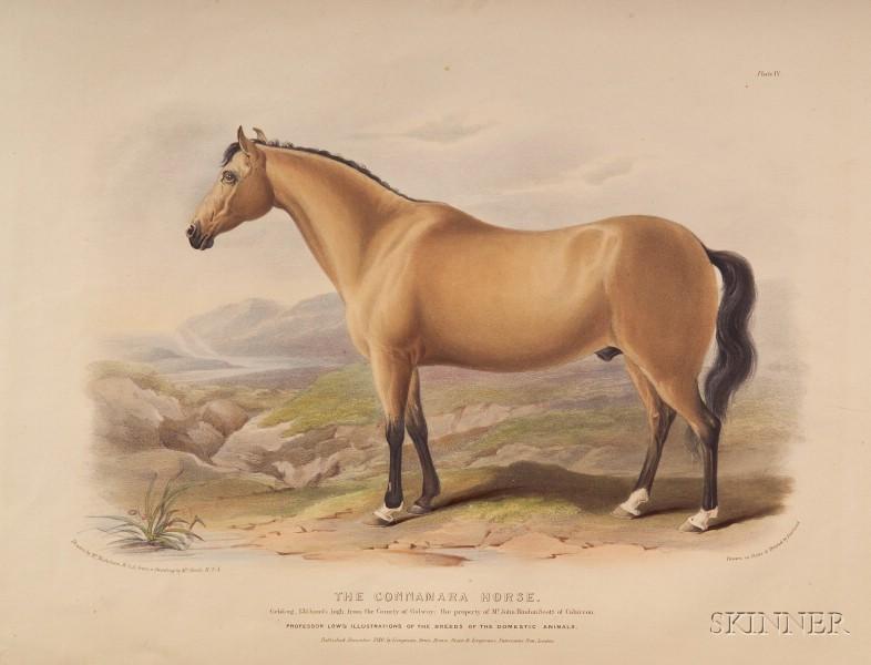 Low, David (1786-1859)