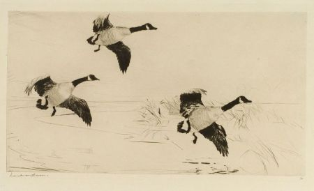Frank Weston Benson (American, 1862-1951)  Three Geese