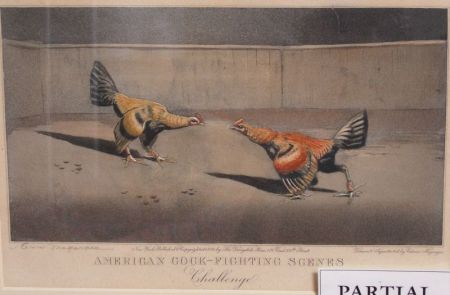 Lot of Three Framed Prints American Cock-Fighting Scenes