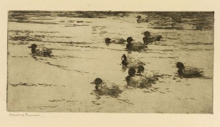 Frank Weston Benson (American, 1862-1951)  Ducks Swimming
