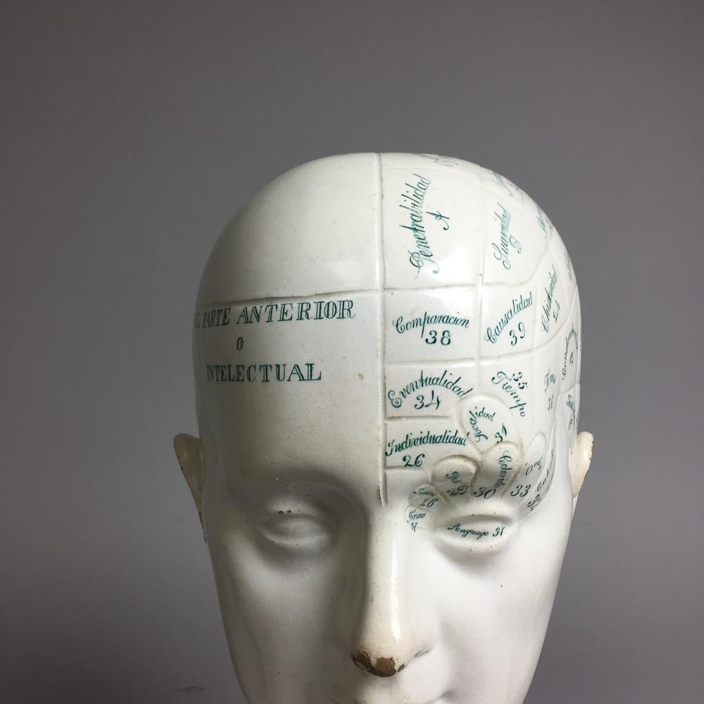 Charles Pickman Ceramic Phrenology Bust