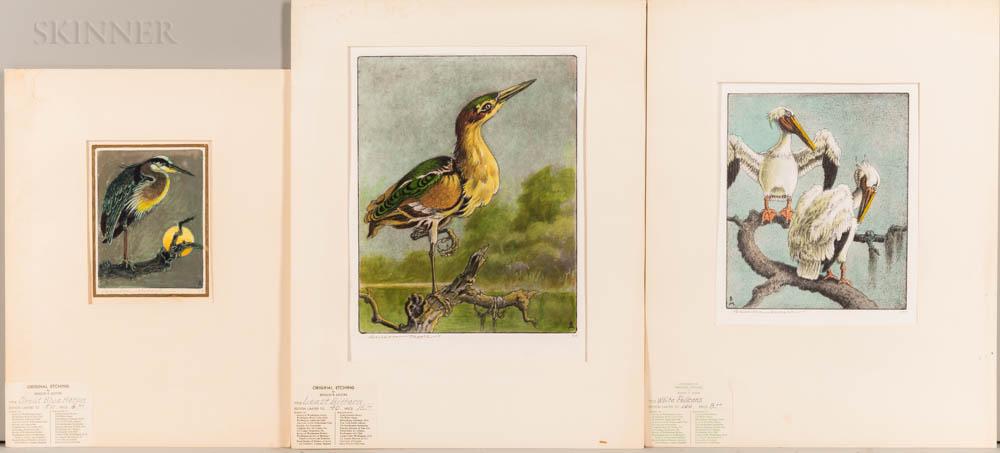 Benson Bond Moore (American, 1882-1974)      Three Bird Prints: Least Bittern ,  White Pelicans