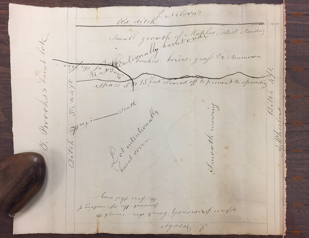 Thoreau, Henry David (1817-1862) Plan of that Part of Thomas Brooks Woodlot, in Lincoln, Mass, which was burned over in the fall of 18