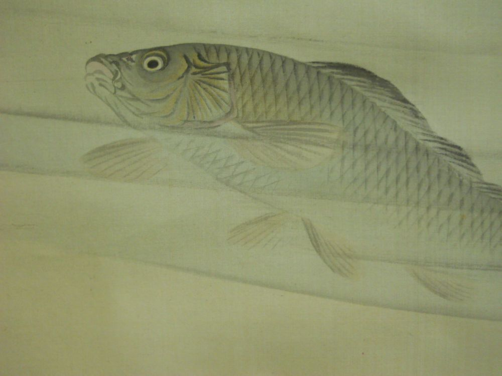 Hanging Scroll Depicting Carp