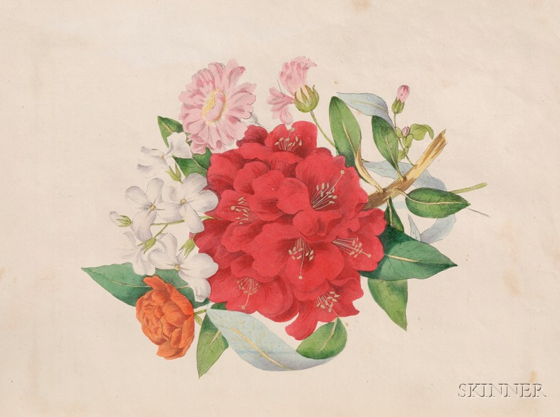(Botanical), Wirt, Mrs. E.W.