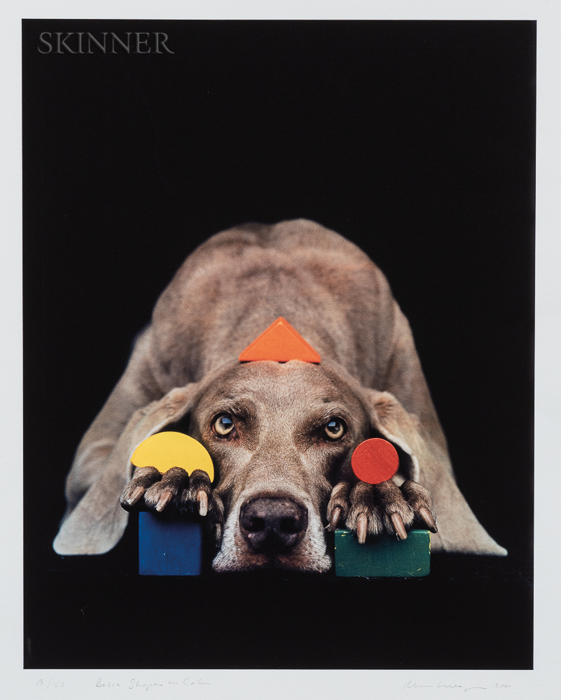 William Wegman (American, b. 1943)      Basic Shapes in Color