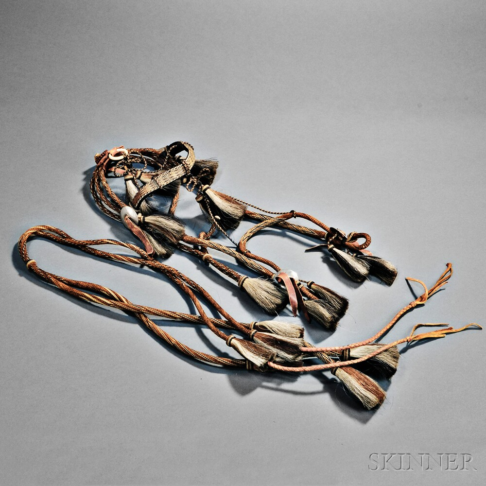 Western Multicolored Hitched Horsehair Bridle and Reins