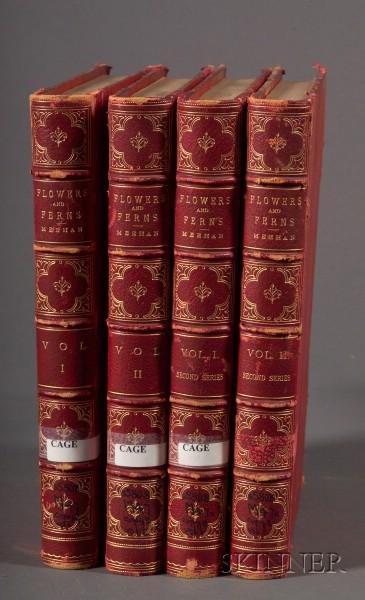 Meehan, Thomas (1826-1901)