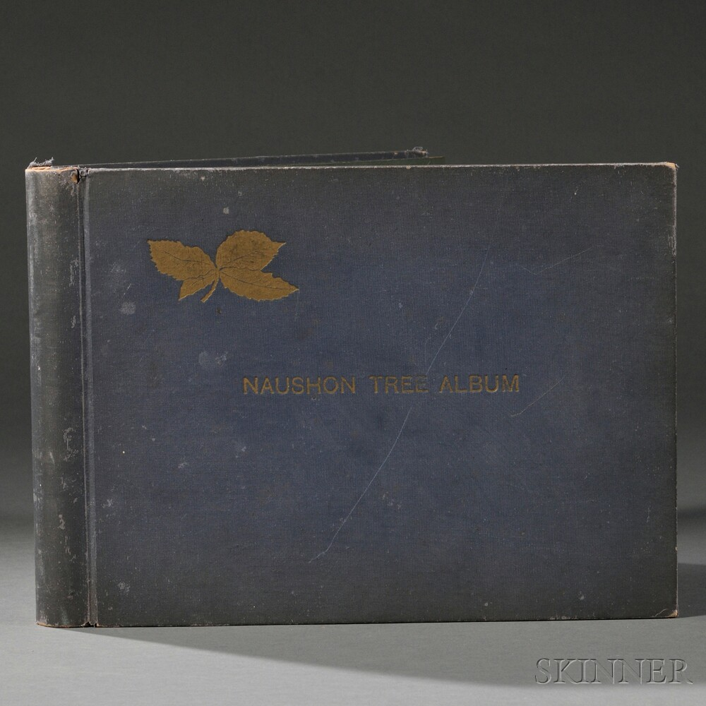 Orne, Harold (fl. circa 1933) Naushon Tree Album