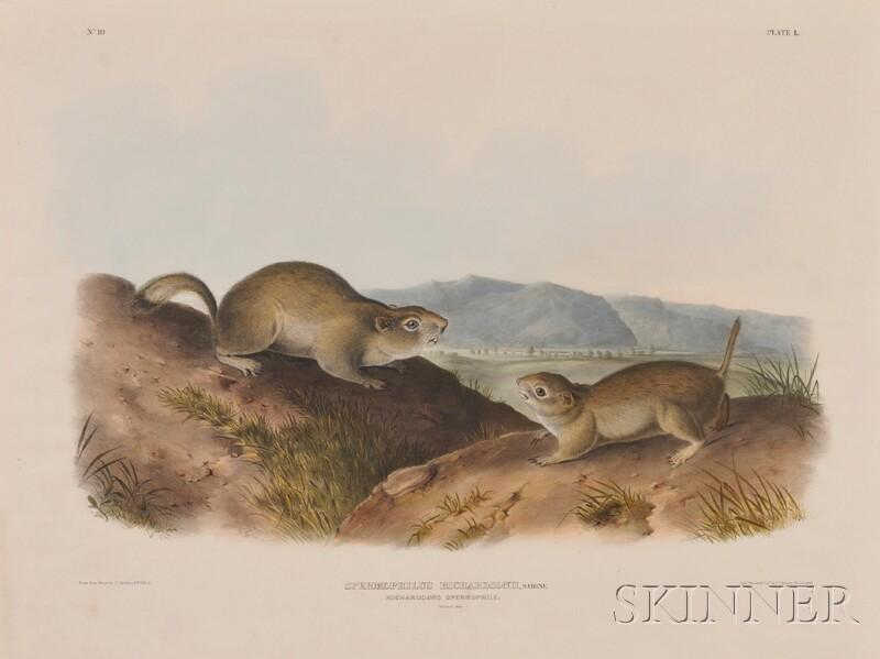 Audubon, John James (1785-1851):