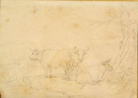 Attributed to Eugene Joseph Verboeckhoven (Belgian, 1798-1881)    Cattle Study