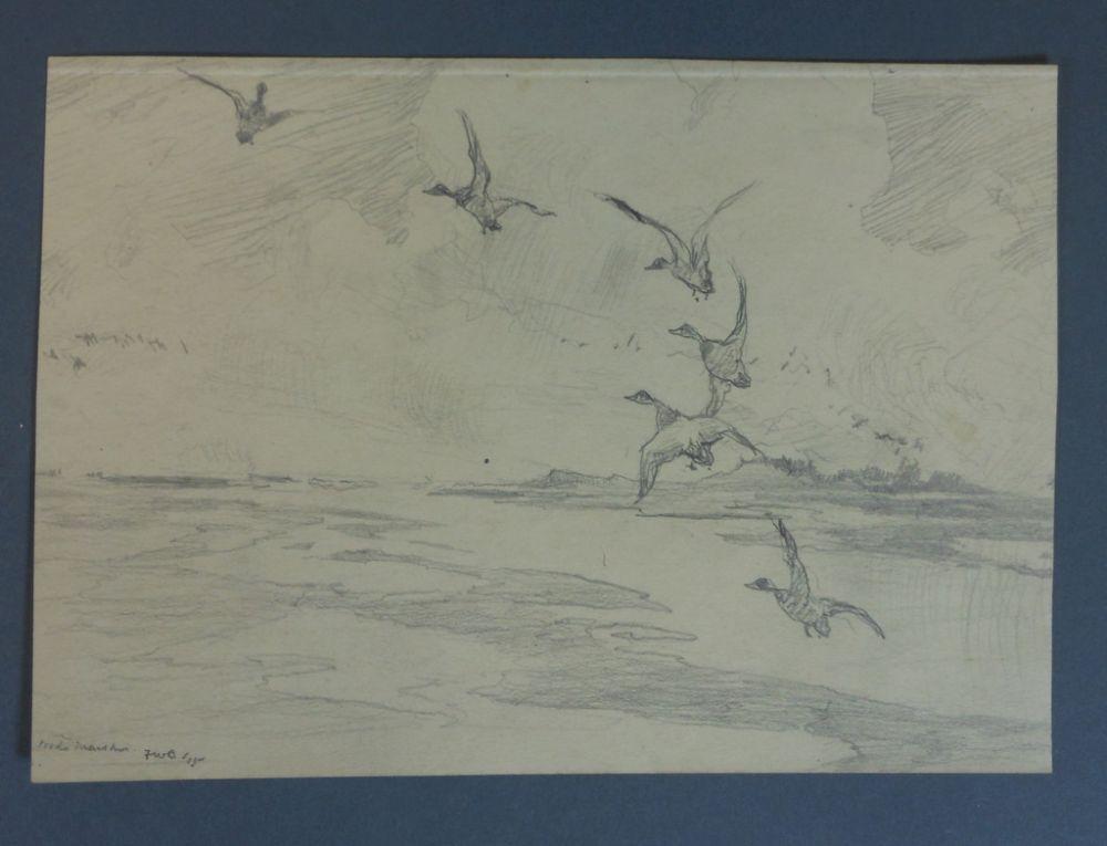 Frank Weston Benson (American, 1862-1951)      Seven Pencil Studies of Ducks and Birds: Widgeons Alighting, Thrush and Yellow Legs