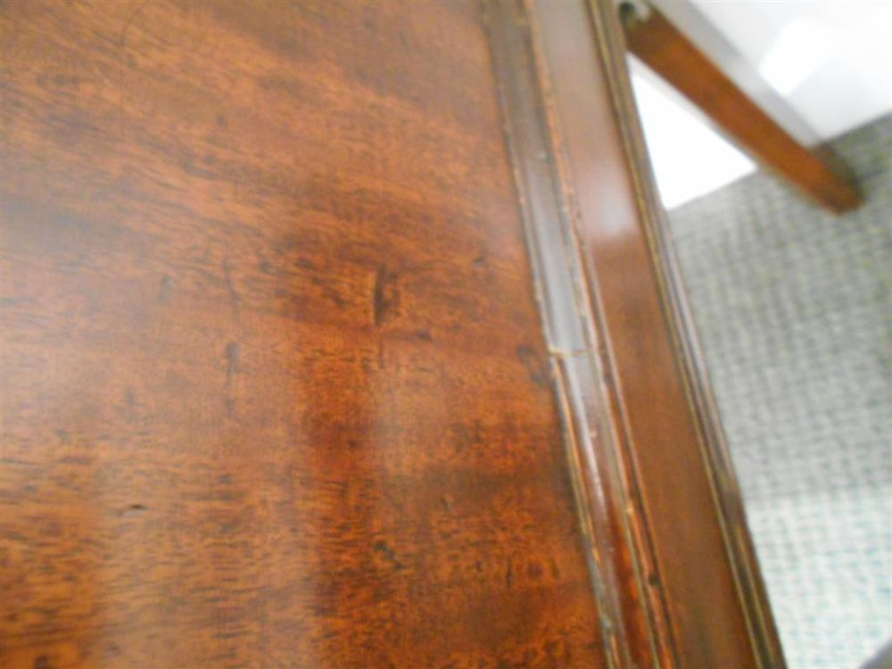 Regency Mahogany Collector's Cabinet