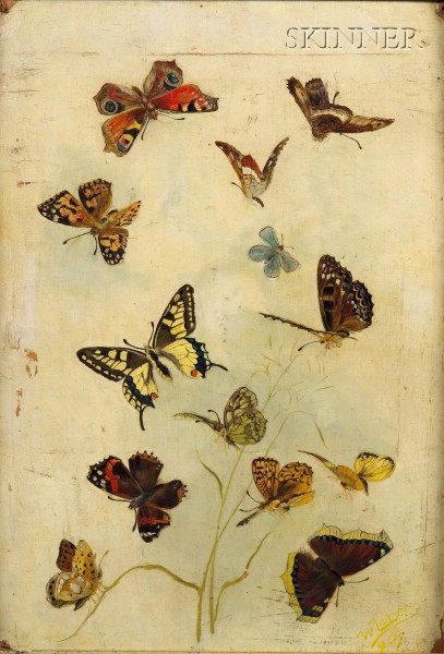 American School, 19th Century      Butterflies