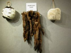 Group of Assorted Fur Shawls, Muffs, Stoles, Etc.