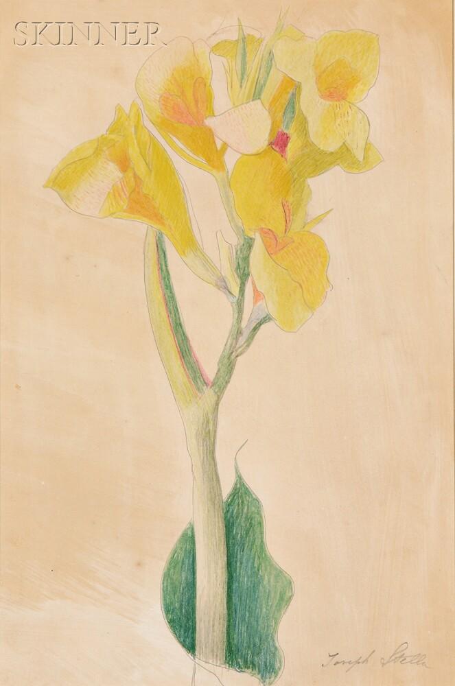 Joseph Stella (American, 1877-1946)      Yellow Alstroemeria