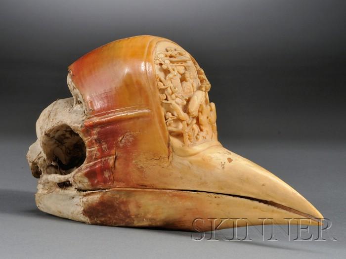 Hornbill Casque
