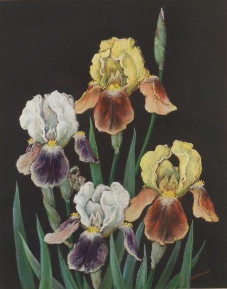 Leo John Meissner (American, 1895-1977)    Irises