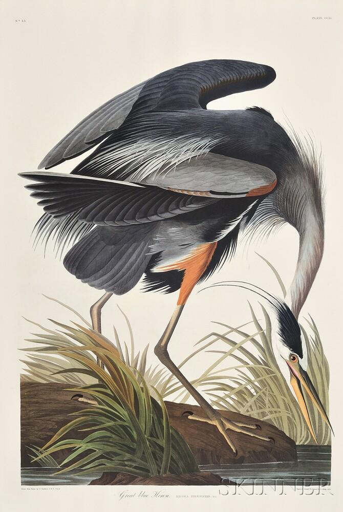 Audubon, John James (1785-1851) The Birds of America,   Abbeville Press Facsimile.