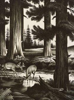 Lot of Three Nature Prints:  Churchill Ettinger (American, 1903-1985), Butterballs,