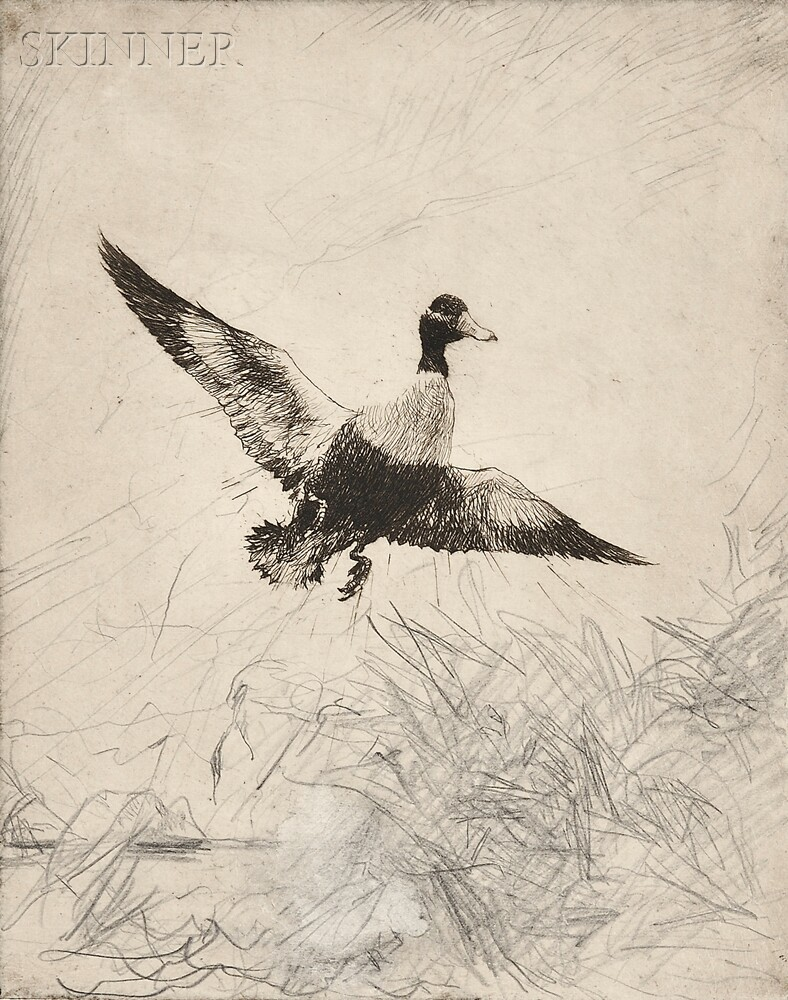 Frank Weston Benson (American, 1862-1951)      Two Impressions of Shoveler Drake