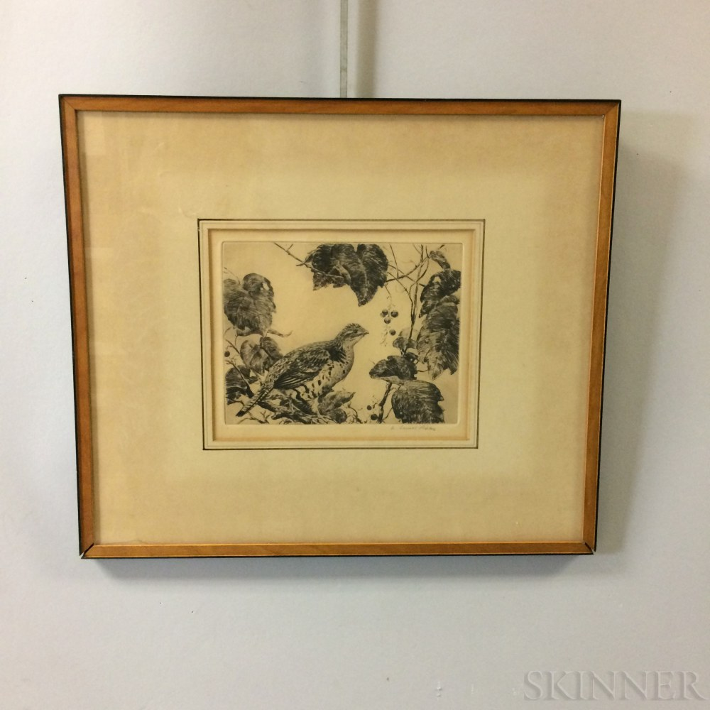 Framed Aiden Ripley Etching of a Grouse and Vines