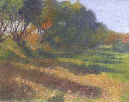 Framed Oil on Canvas Impressionist Landscape