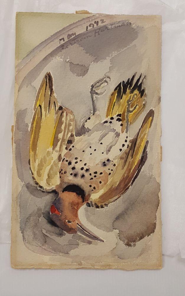 Seven Works on Paper:      Alfred Stieglitz (American, 1846-1964)