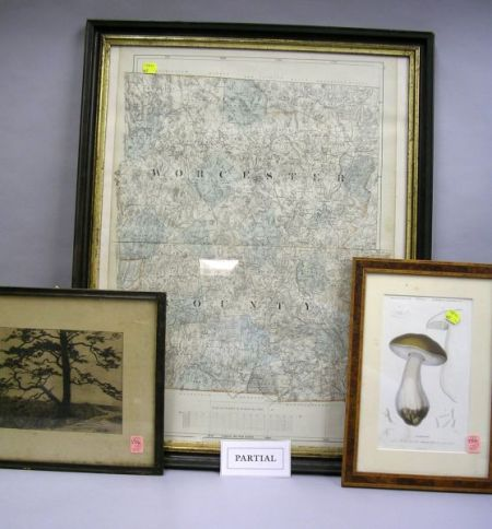 Six Assorted Framed 19th and Early 20th Century Prints and a Drawing