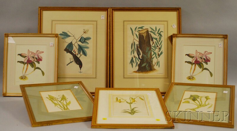 Seven Framed Botanical and Ornithological Prints