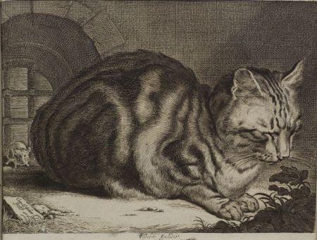 Cornelis Visscher (Dutch, 1586-1658)    The Large Cat,