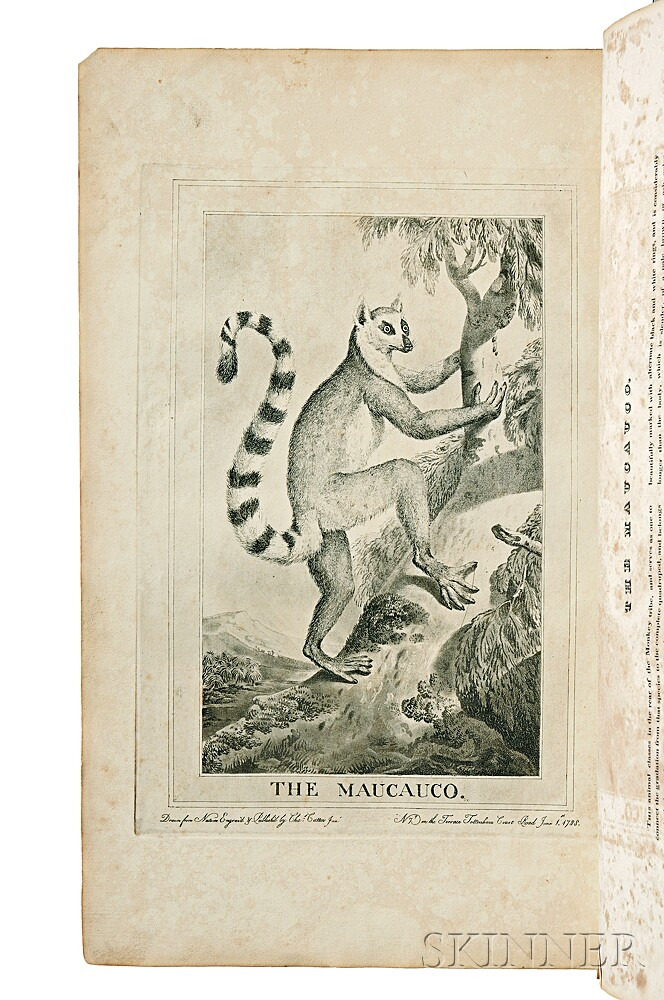 Catton, Charles (1728-1798) Thirty-Six Animals, Drawn from Nature, and Engraved in Aqua-Tinta.
