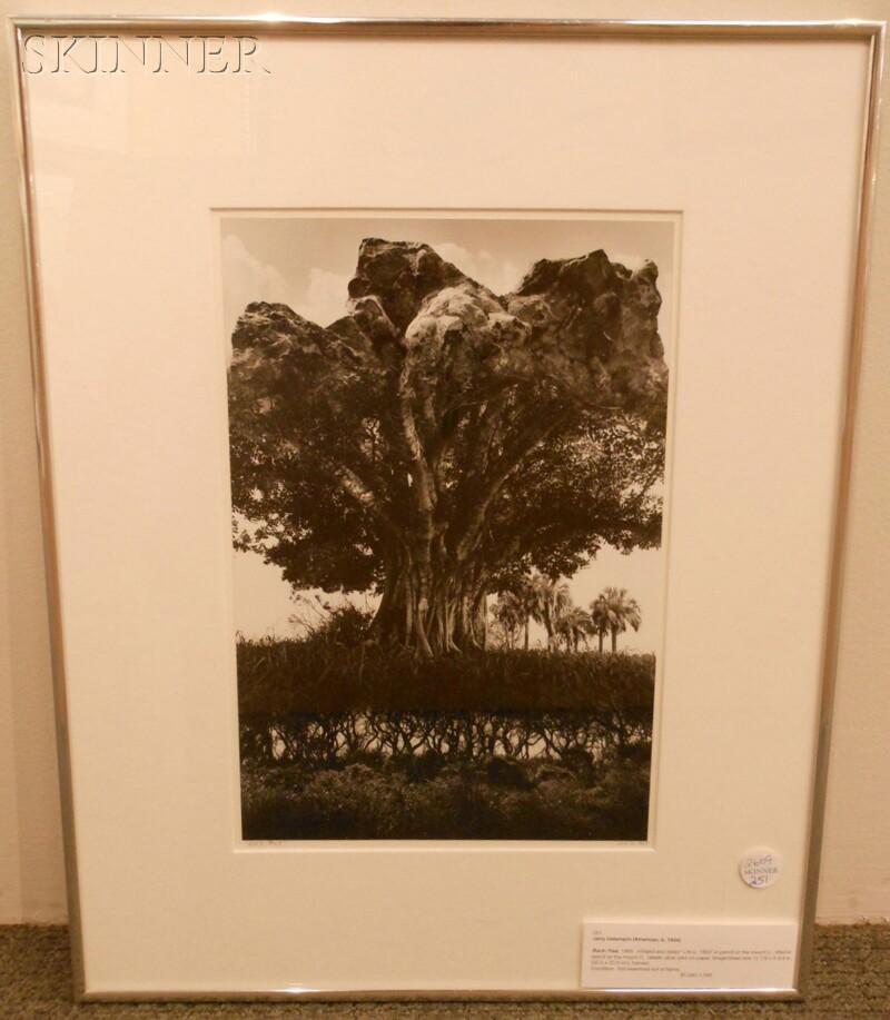 Jerry Uelsmann (American, b. 1934)      Rock-Tree