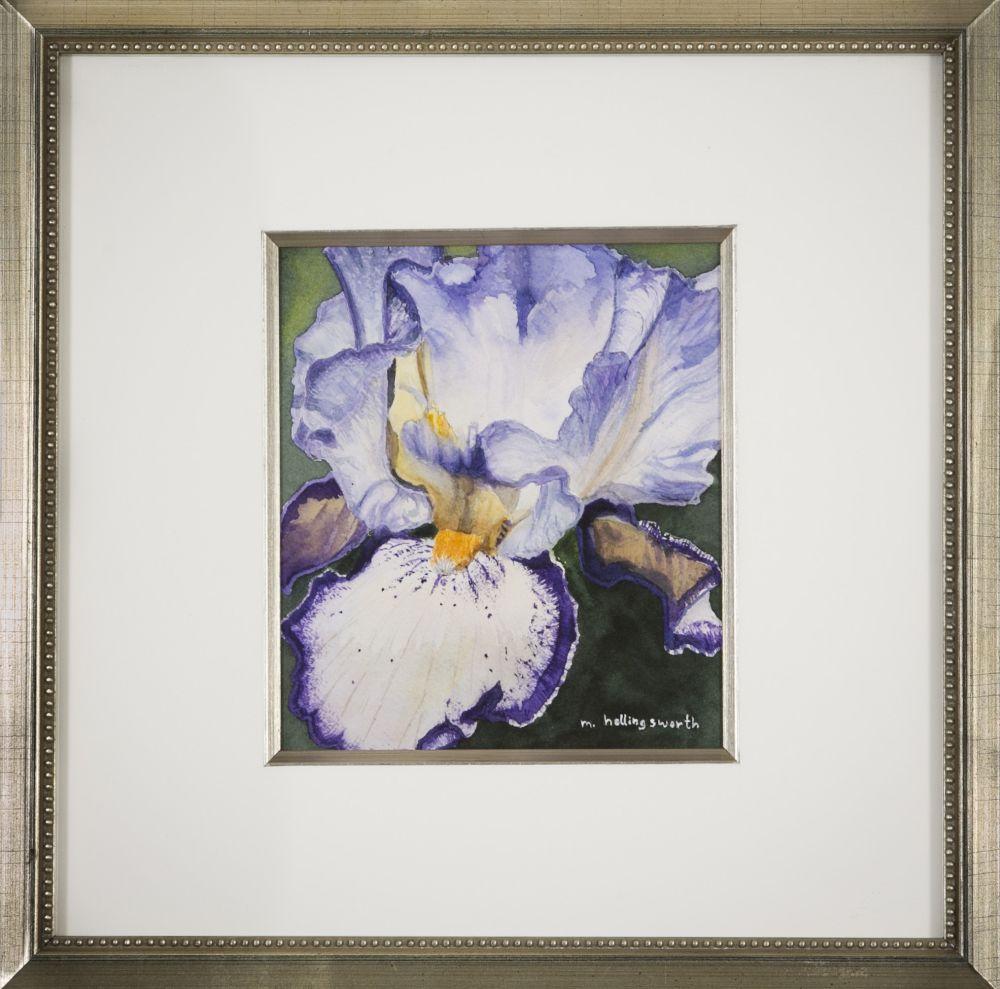 Mary Hollingsworth (Massachusetts, b. 1949), Cropped Iris