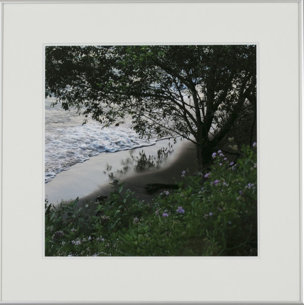Timothy Johnson (Massachusetts), Water's Edge