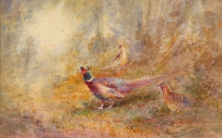 American School, 20th Century    Pheasants