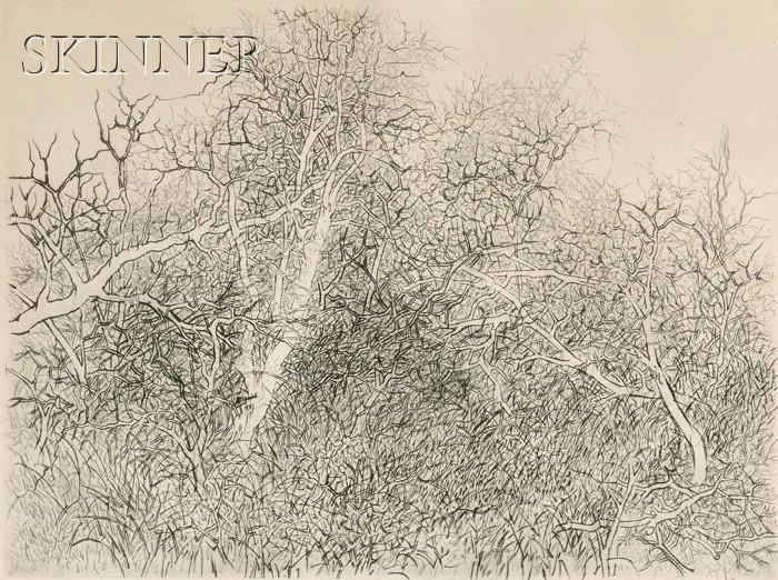 Gabor F. Peterdi (American, 1915-2001)      Floating Branches