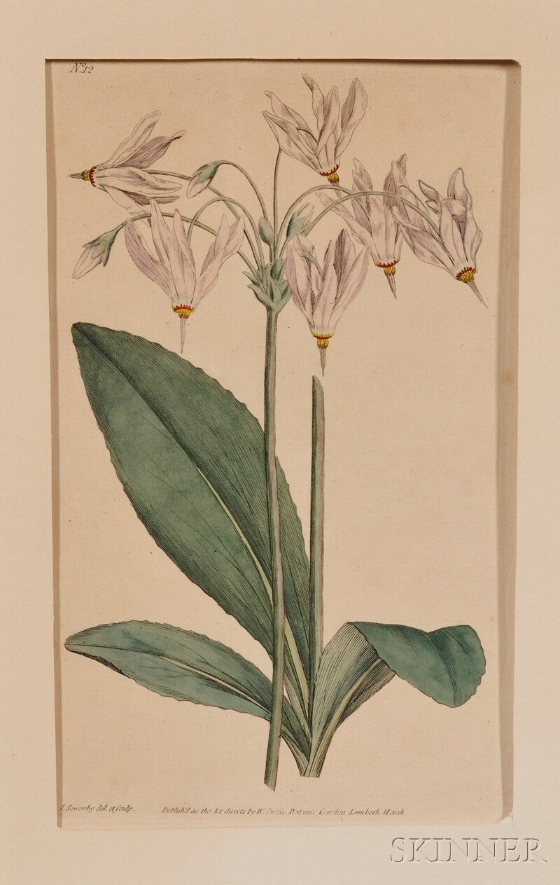 Group of Fourteen Small Hand-colored Botanical Bookplates