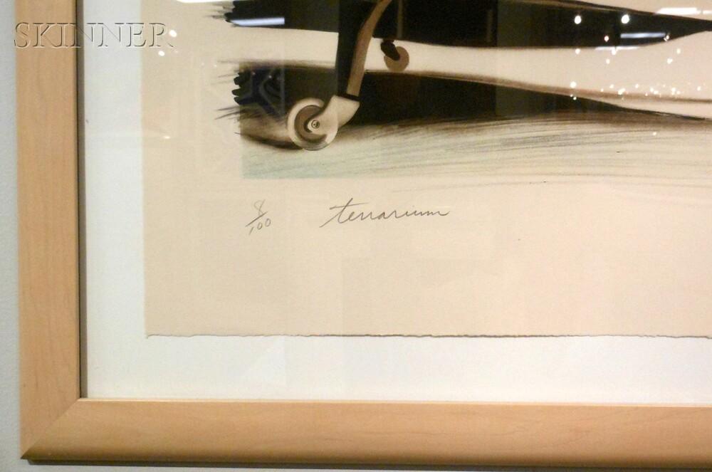 James Rosenquist (American, b. 1933)      Terrarium