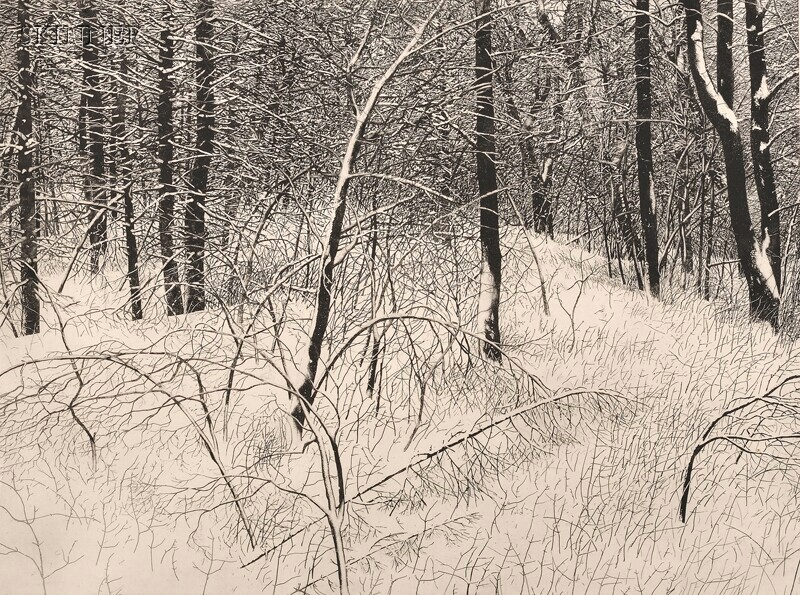 Vaino Kola (Finnish/American,  b. 1937)      Norton Woods