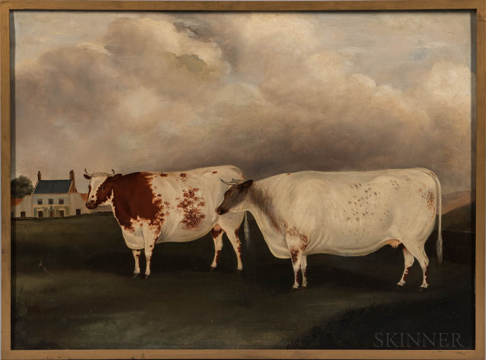 Anglo/American School, 19th Century      Portrait of Two Cows
